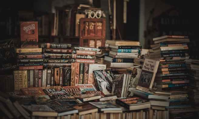 pile of assorted novel books