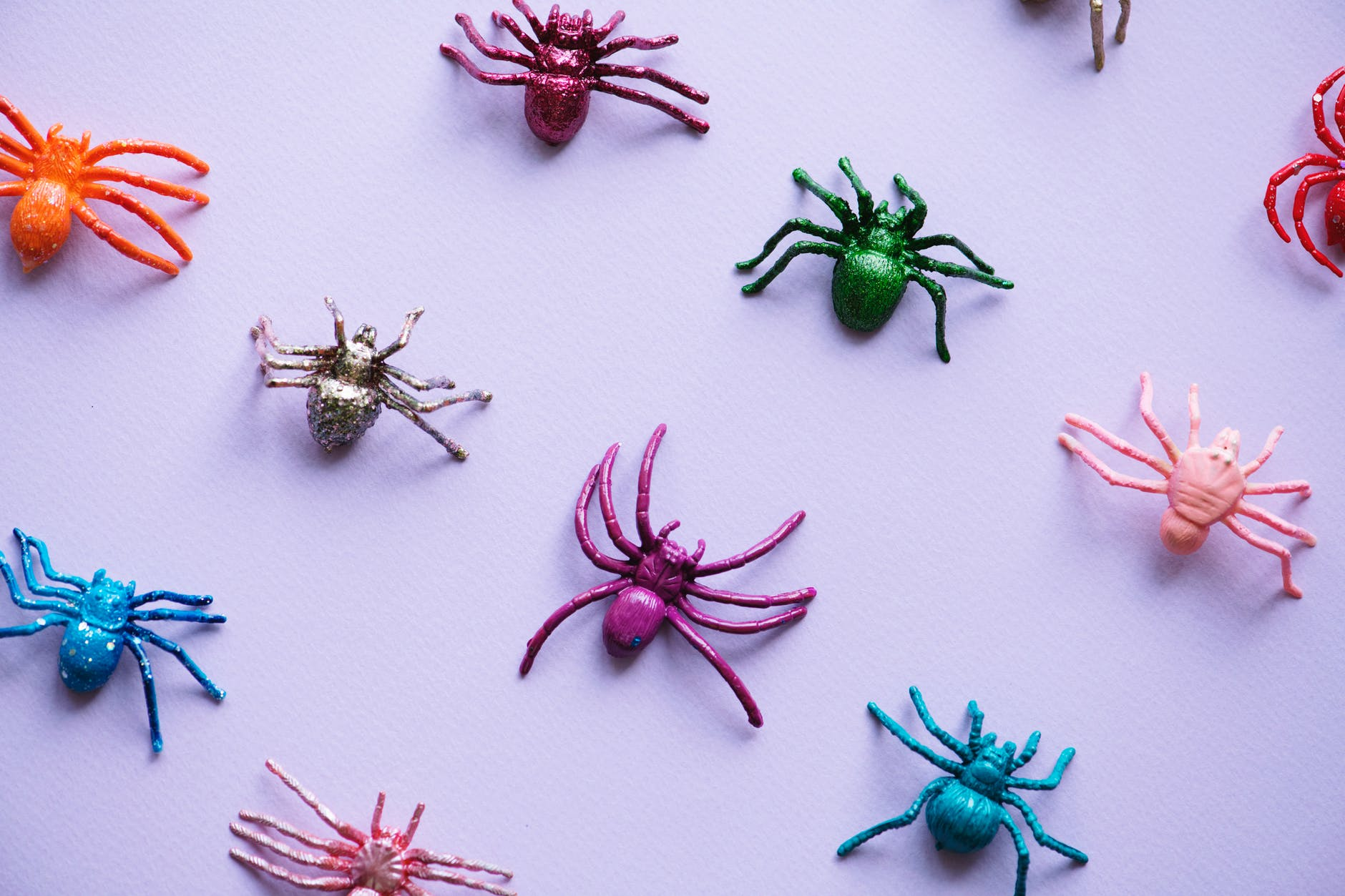 assorted color spider plastic toy collection