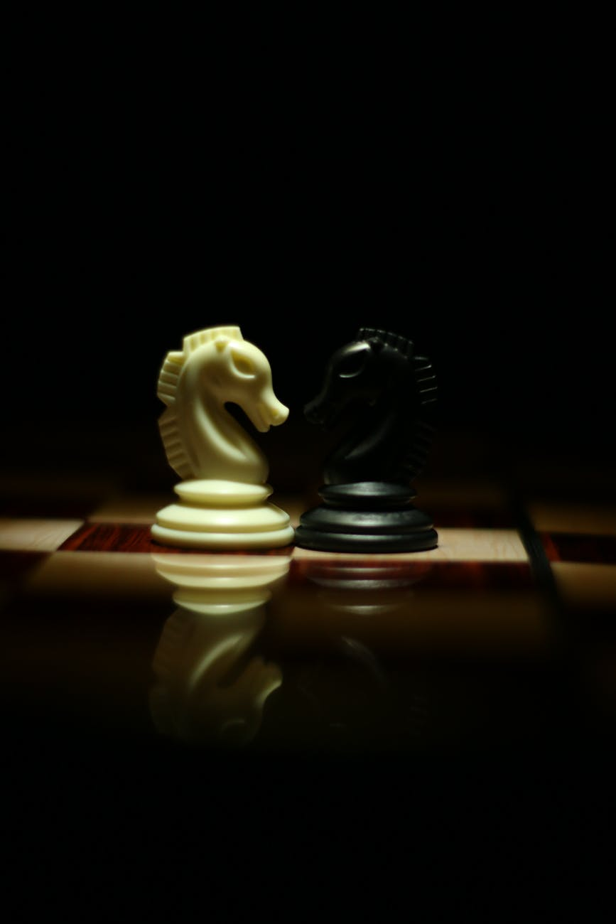 two white and black chess knights facing each other on chess board